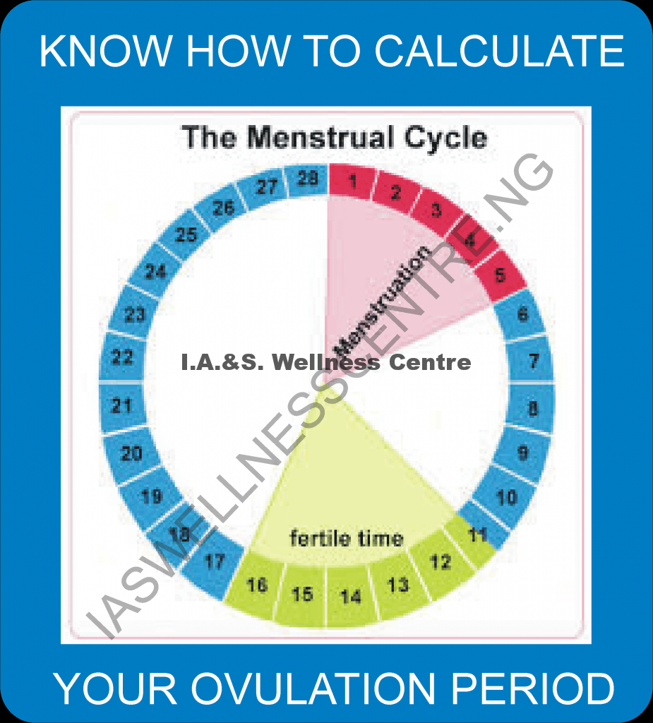HOW TO CALCULATE YOUR OVULATION PERIOD