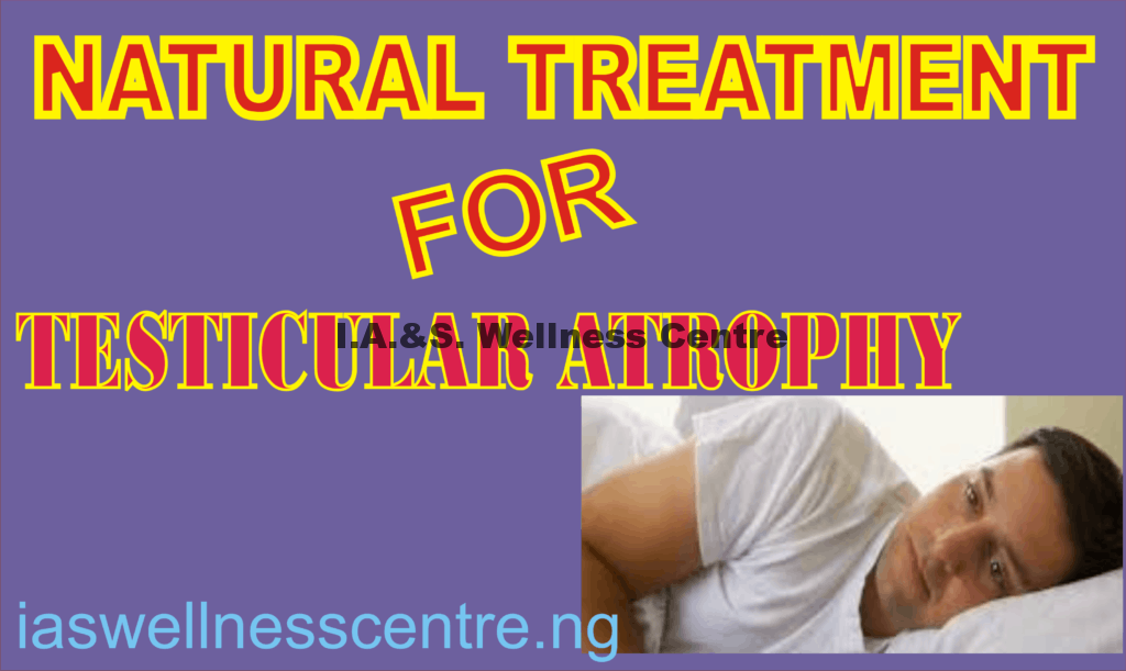TESTICULAR ATROPHY AND IT'S NATURAL TREATMENT IN NIGERIA