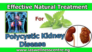 effective natural treatment for Polycystic Kidney Disease